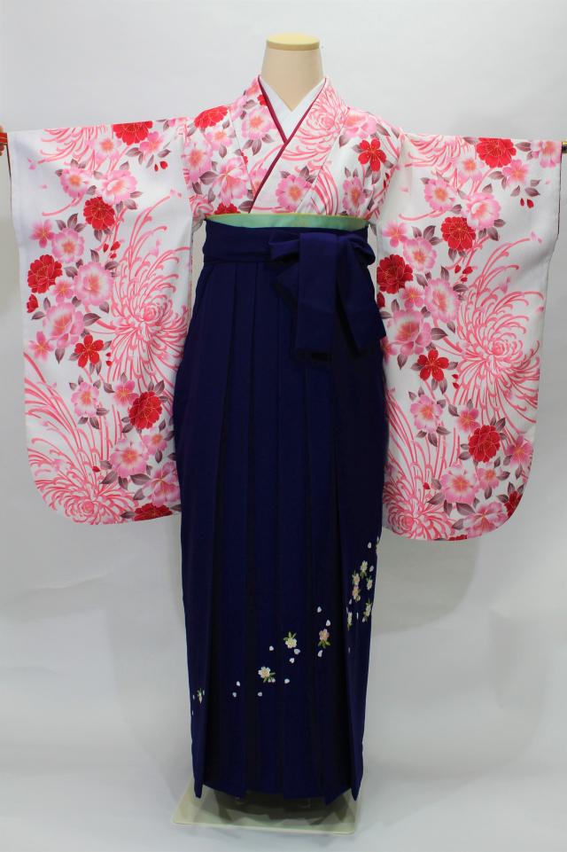 西宮出張着付けの2 白地に菊と桜の二尺袖着物