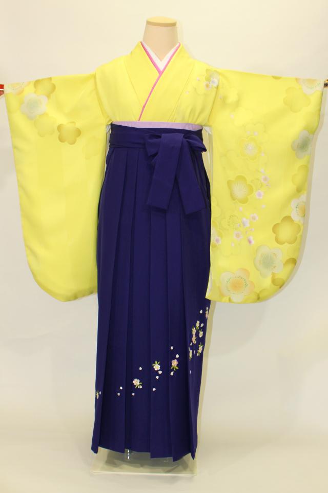 出張着付け西宮の1 レモンイエロー地に桜柄二尺袖着物