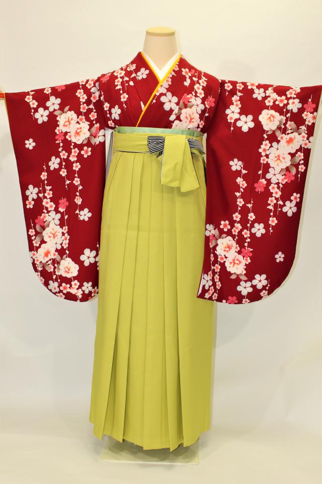 尼崎出張着付けの2 赤地に桜の二尺袖着物