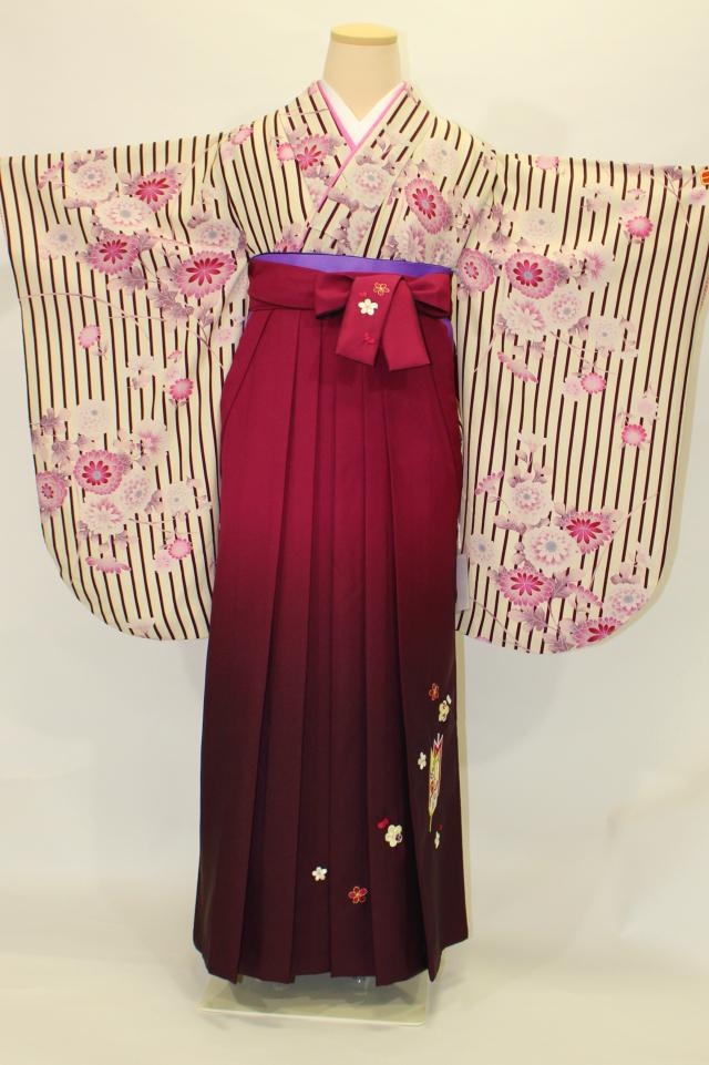 出張着付け西宮の1 ストライプ紫菊の二尺袖着物