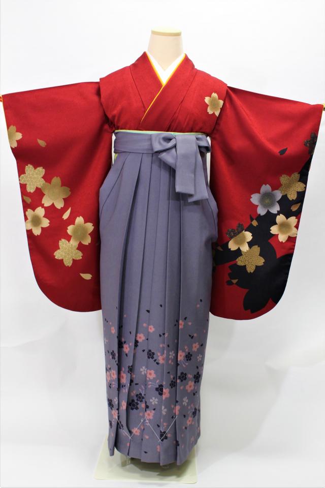 西宮出張着付けの2 濃い赤に桜の二尺袖着物