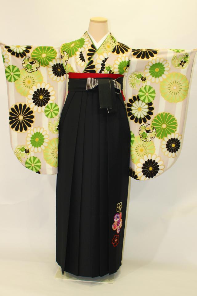 芦屋出張着付けの2 クリーム地に緑の菊の二尺袖着物