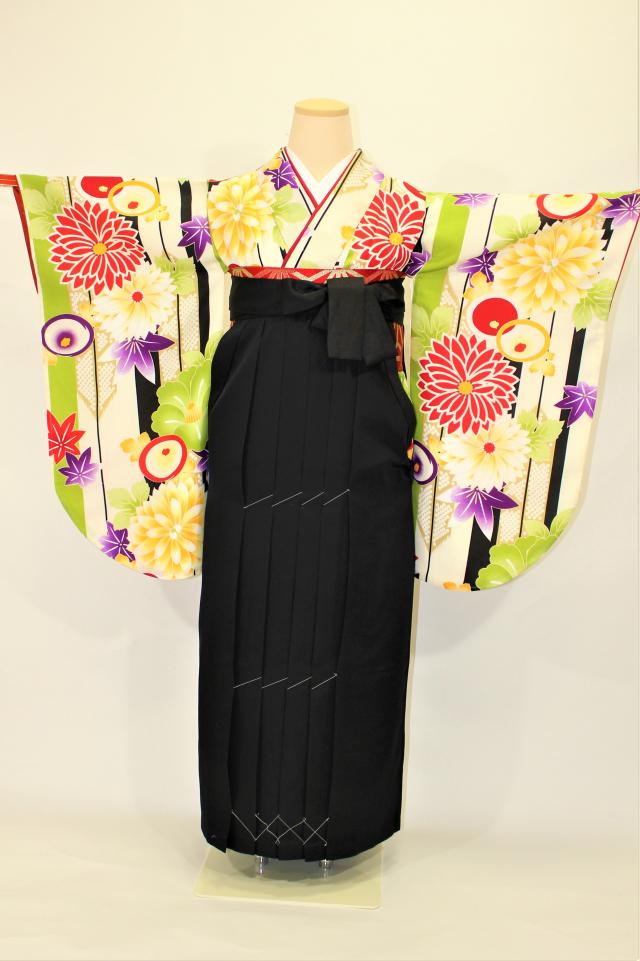西宮出張着付けの袴のレンタル クリーム地ストライプ菊