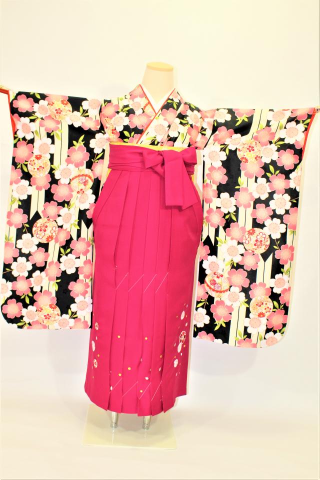 出張着付け西宮の1 黒地に桜のお子様二尺袖着物