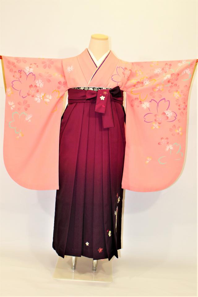 芦屋出張着付けの2 ピンク地にライン桜の二尺袖着物